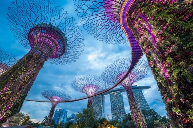 Zdjęcia: ---, ---, Singapur, SINGAPUR
