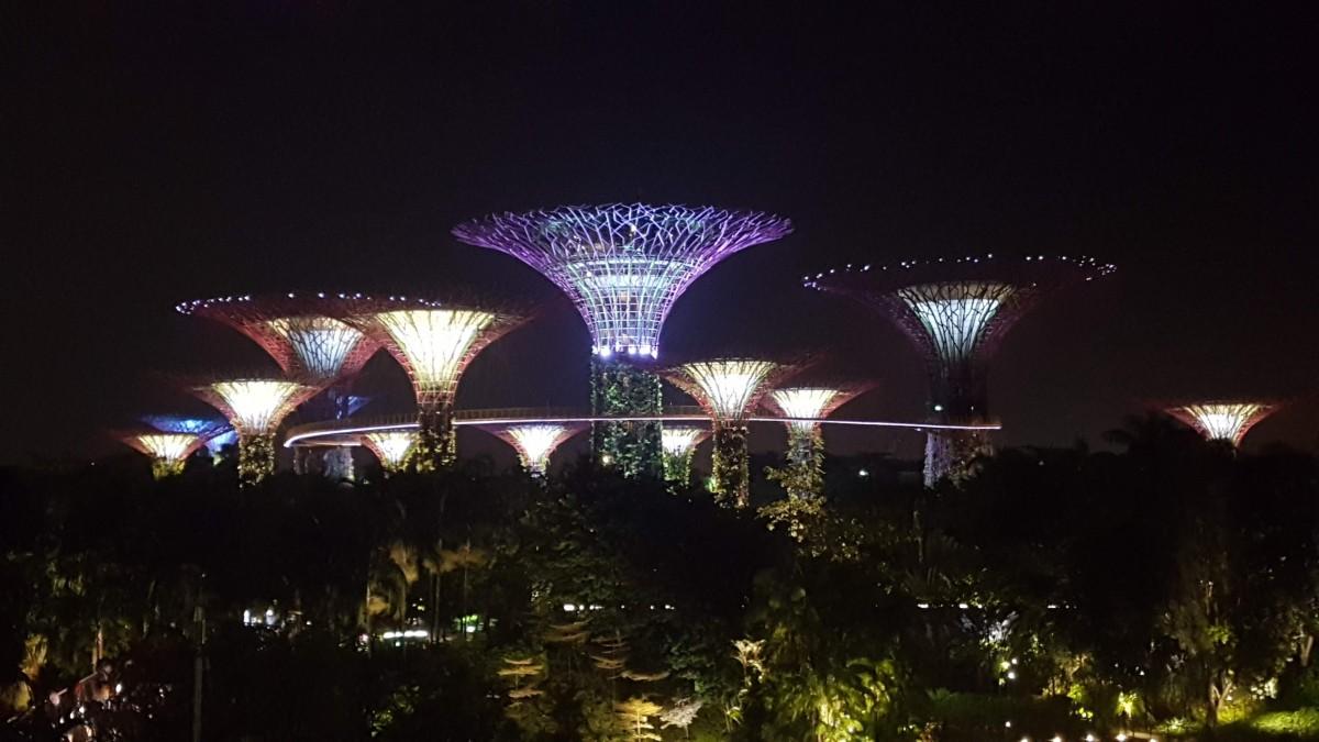 Zdjęcia: Garden Bay The Bay, Garden bay the bay, SINGAPUR
