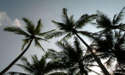 SINGAPUR / - / Wyspa Ubin / Wyspa Ubin 4