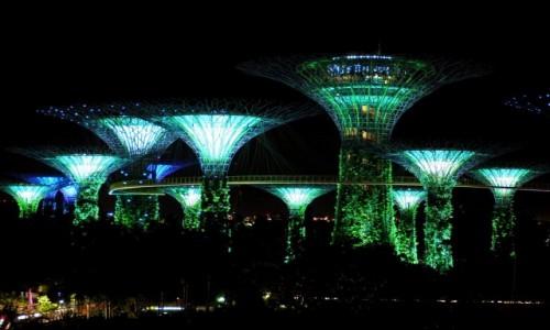 Zdjęcie SINGAPUR / płd -wsch Azja / Marina Bay / Gardens by the bay