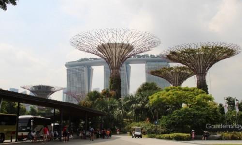 Zdjecie SINGAPUR / Centrum / Azja / Gardens by the bay