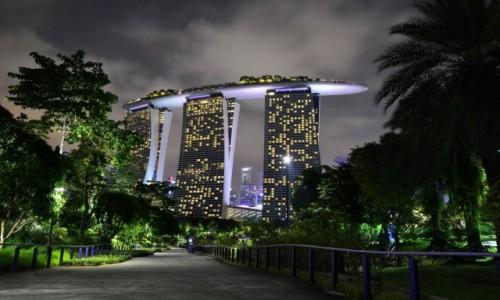 Zdjecie SINGAPUR / -Marina Sands / Gardens by the Bay / Singapur nocą