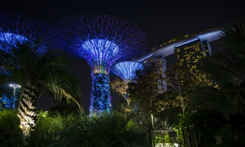 Zdjecie SINGAPUR / Singapur / Singapur / Gardens by the Bay