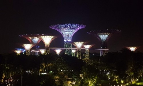 SINGAPUR / - / Garden Bay The Bay / Garden bay the bay