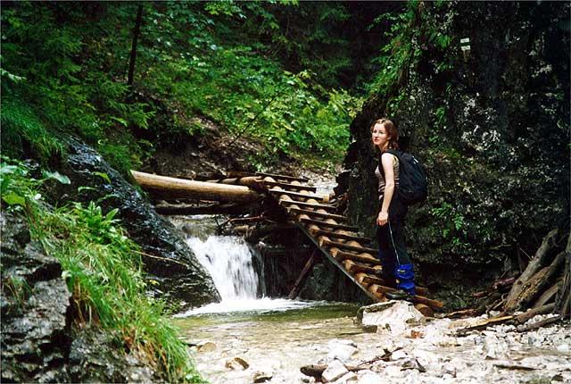 Zdjęcia: Dolina Sucha Bela, Słowacki Raj, Na szlaku, a w zasadzie w korycie potoku, SłOWACJA