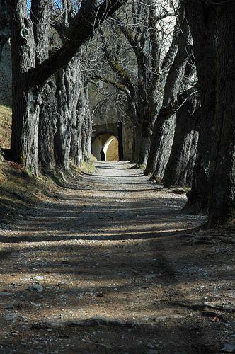 Zdjęcia: Zamek w Starej Lubowli. , wschodnia Słowacja -Spisz, ..., SłOWACJA