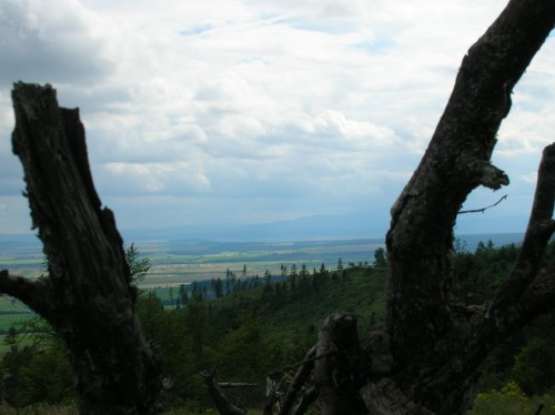 Zdjęcia: Słowacja, Słowacja, Przełęcz, SłOWACJA