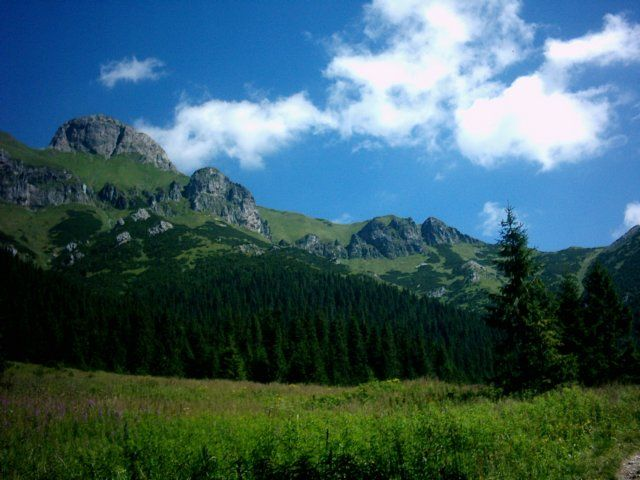 Zdjęcia: Dolina Zadnich Koperszadów, Tatry Wysokie, Na polance, SłOWACJA
