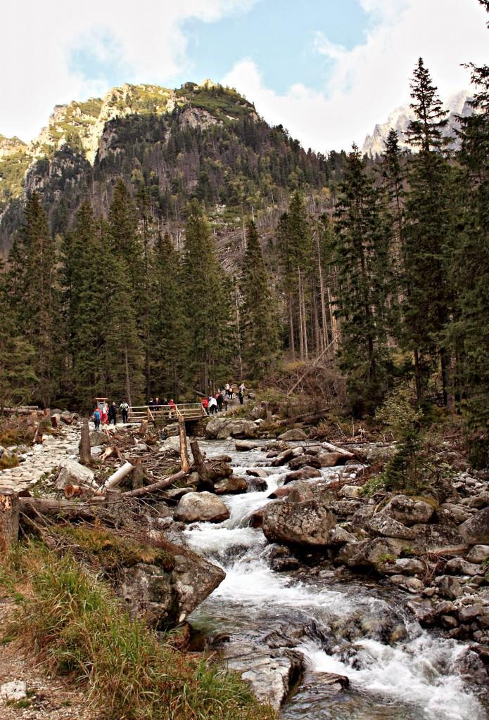 Zdjęcia: Wodospady Zimnej Wody, Słowackie Tatry  Wysokie.,  W Dolinie Zimnej Wody w Słowackih Tatrah., SłOWACJA