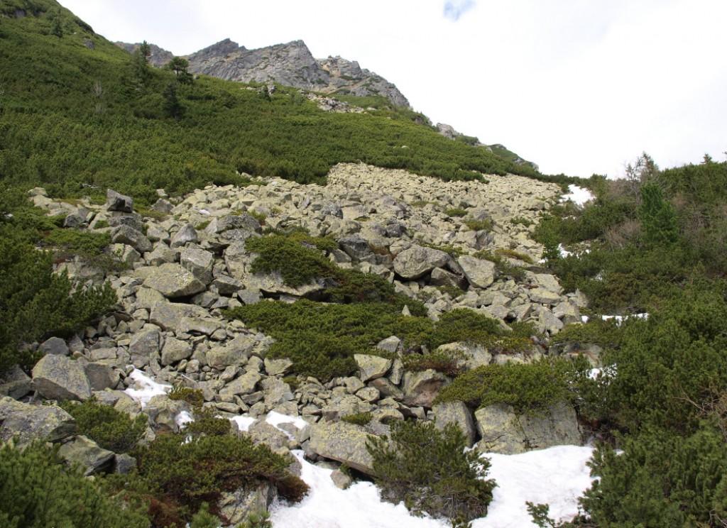 Zdjęcia: Mięguszowiecka Dolina, Tatry, Mięguszowiecka Dolina, SłOWACJA
