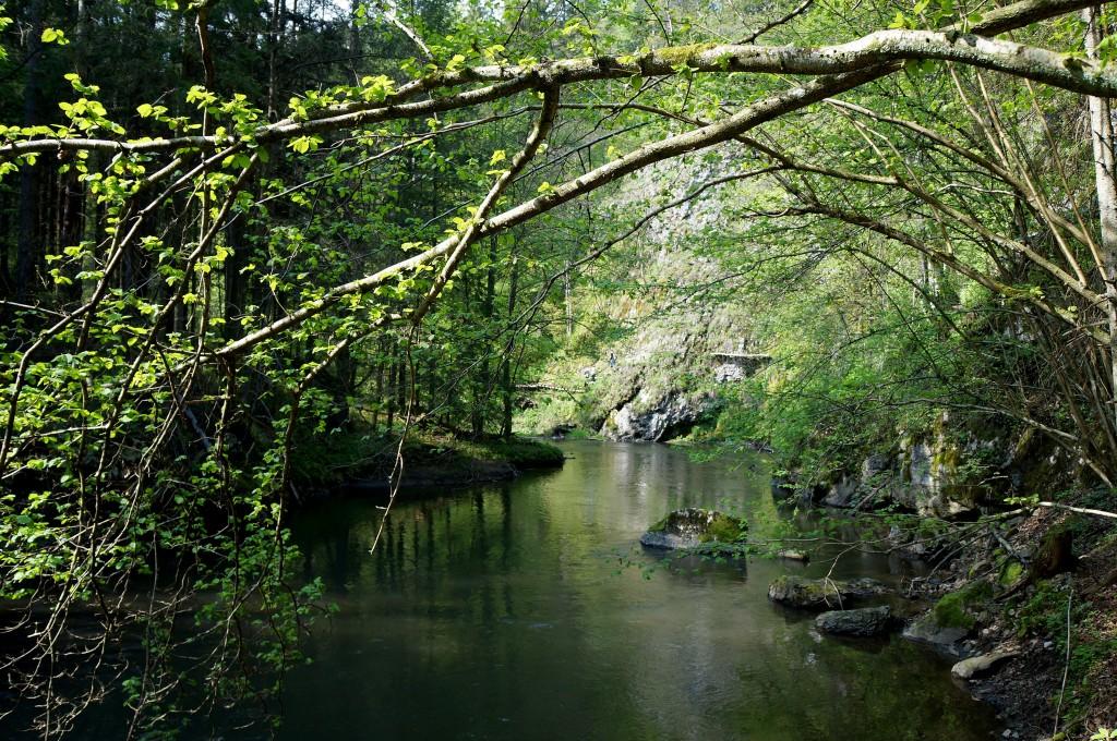 Zdjęcia: Słowacki Raj, Spisz, Dolina Suchej Beli 2, SłOWACJA