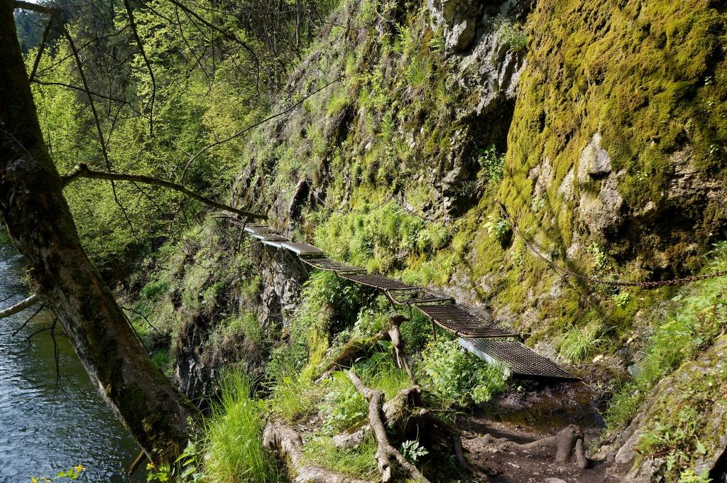 Zdjęcia: Słowacki Raj, Spisz, Dolina Suchej Beli 5, SłOWACJA