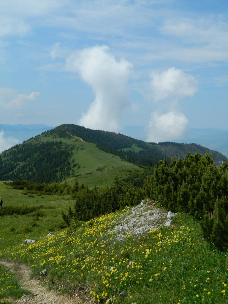 Zdjęcia: okolice siwego wierchu, tatry zachodnie, widok na szczyt Babki, SłOWACJA
