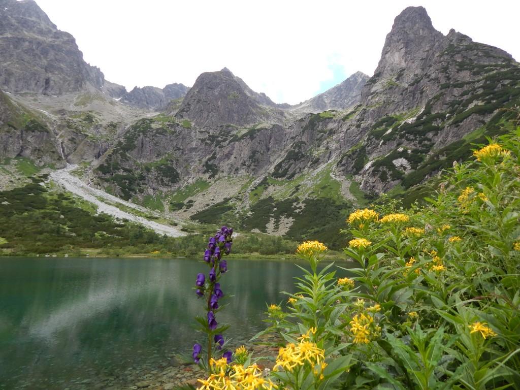 Zdjęcia: Zielony Staw Kieżmarski, Tatry Wysokie, Zielono mi w duszy, SłOWACJA