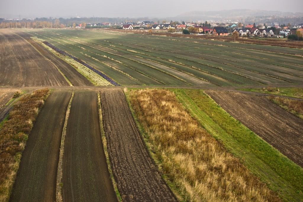 Zdjęcia: Słowacja, jesienne pole, SłOWACJA