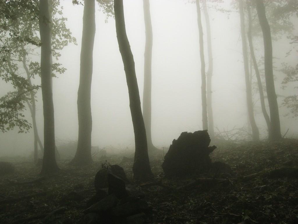 Zdjęcia: Makovica, Slanskie Vrchy, We mgle, SłOWACJA