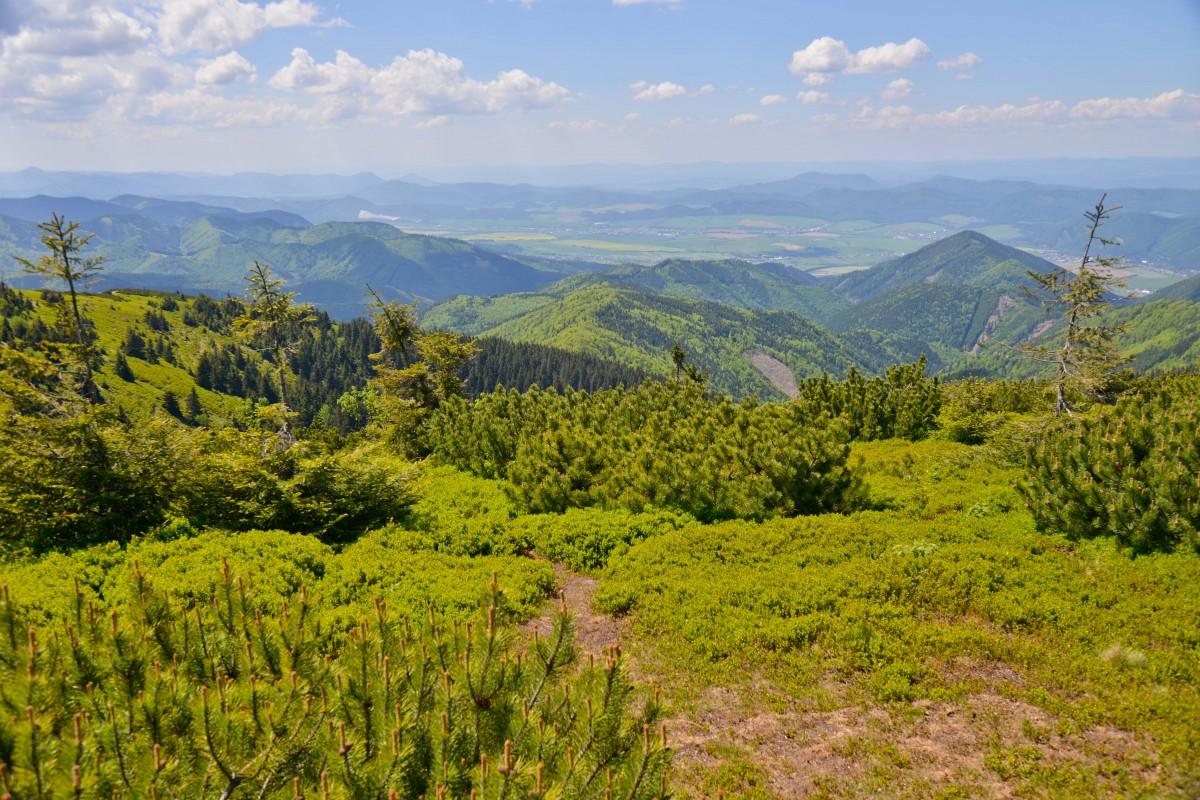 Zdjęcia: Martinskie Hole, Mała Fatra, Zanurzony w zieleni, SłOWACJA