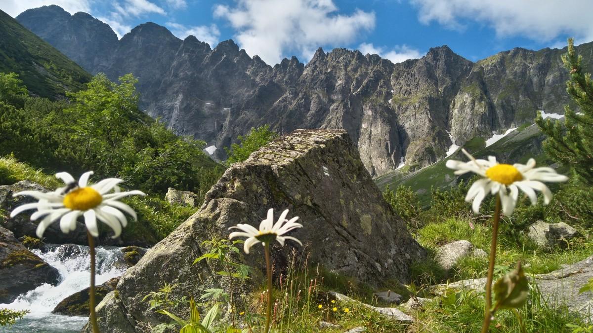 Zdjęcia: w drodze na lodową przełęcz, tatry wysokie, jaworowa dolina , SłOWACJA