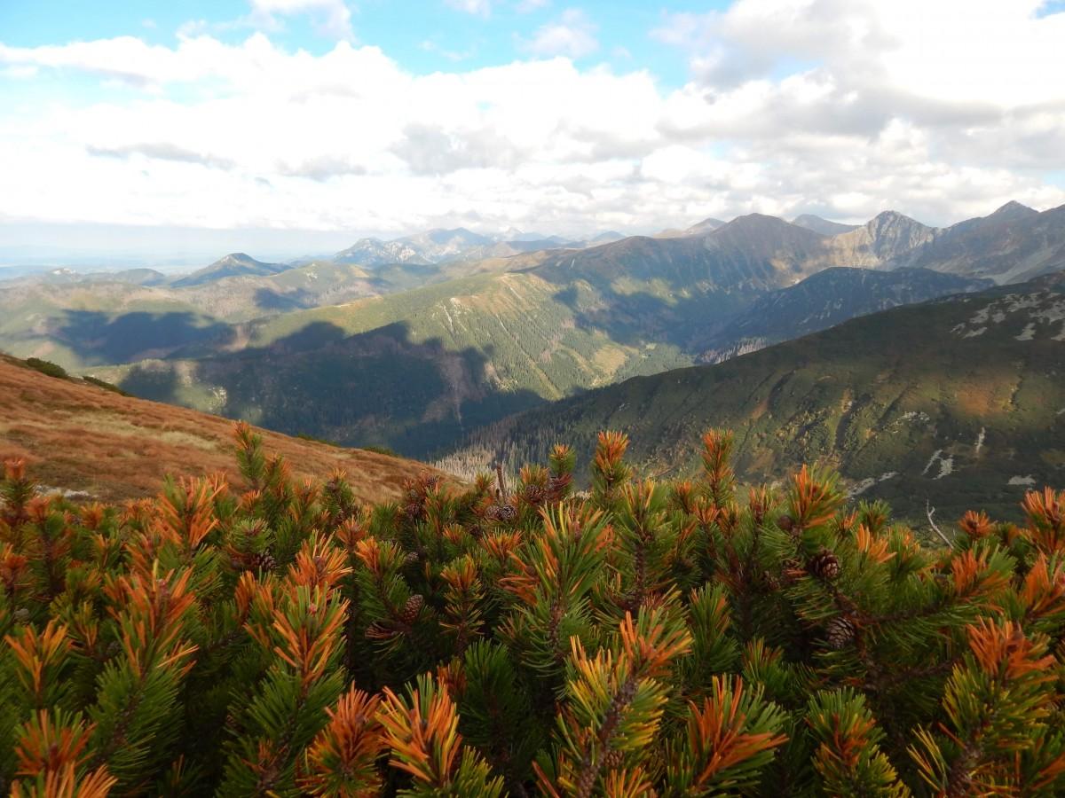 Zdjęcia: Tatry, Tatry , Kolorami jesień się zaczyna, SłOWACJA