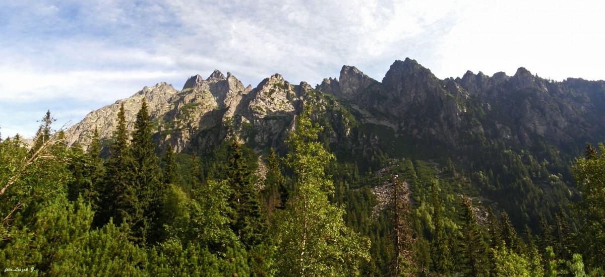 Zdjęcia: Dolina Staroleśna., Wysokie Tatry., Panorama - W Dolinie Saroleśnej na szlaku do Zbójnickiej Chaty., SłOWACJA