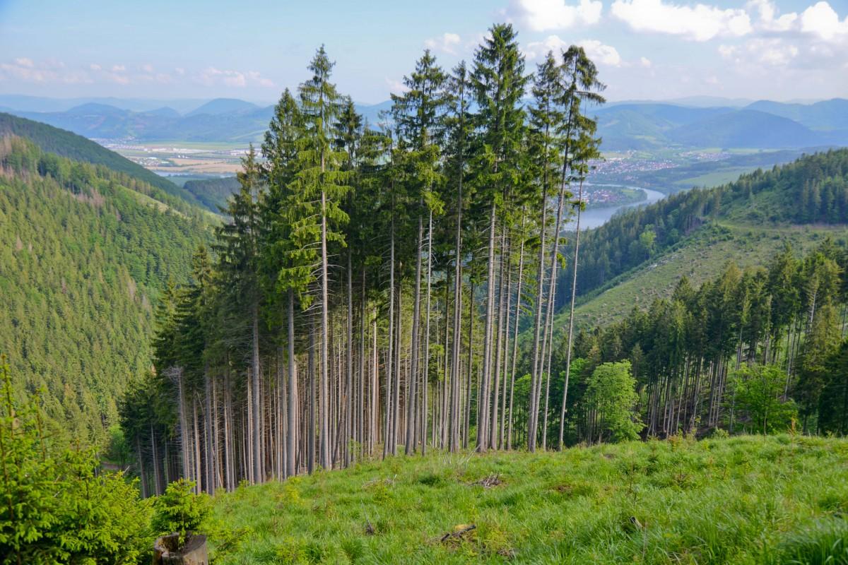 Zdjęcia: szlak na Mincol, Martinske Hole, Magia zaklęta w górach, SłOWACJA