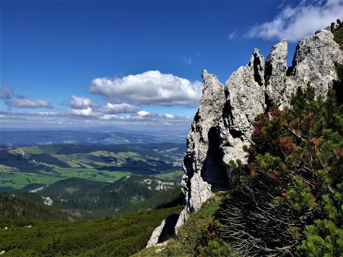 Zdjęcia: gdzieś na szlaku, tatry zachodnie, magia tatr, SłOWACJA