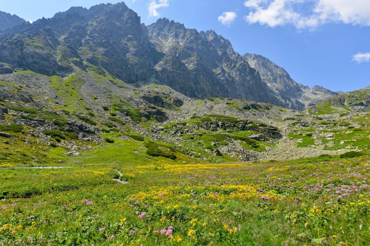 Zdjęcia: Dolina Wielicka, Tatry Wysokie, Łąki pod Gerlachem, SłOWACJA