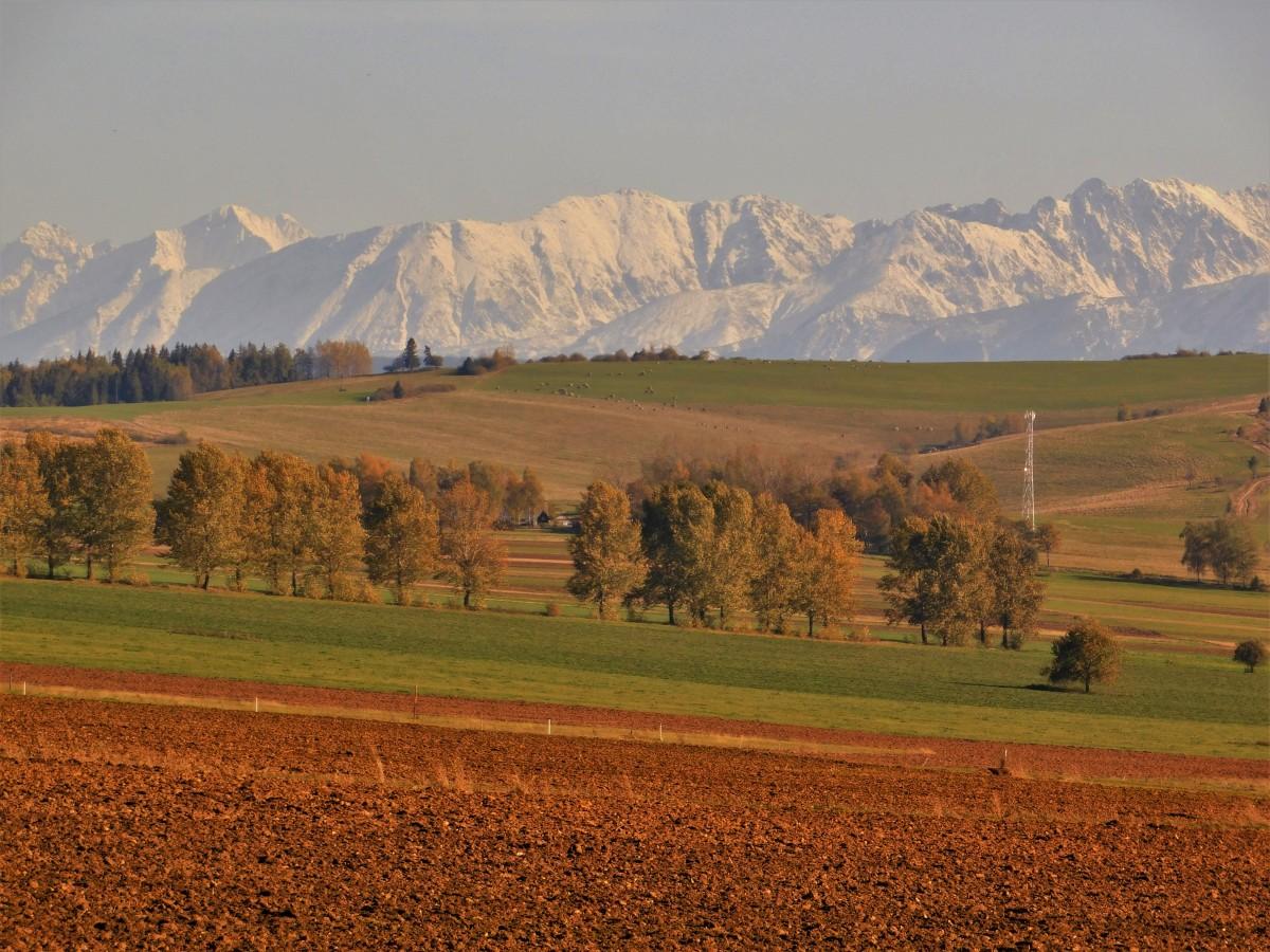 Zdjęcia: Orawa , jesień i zima , SłOWACJA