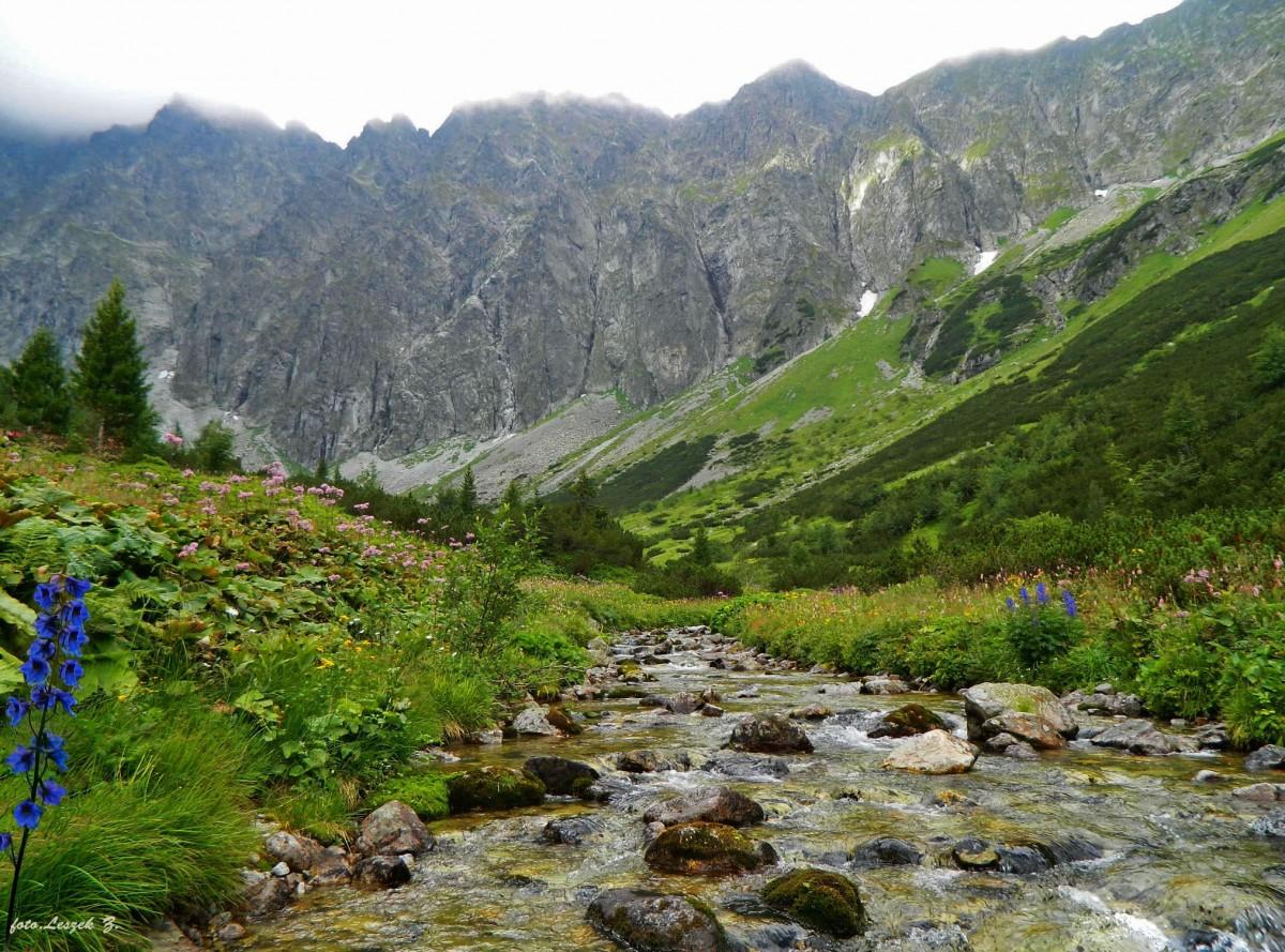 Zdjęcia: Szlak na Lodową Przełęcz., Wysokie Tatry., Dolina Jaworowa z Jaworowymi Turniami., SłOWACJA