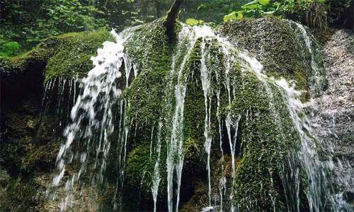 Zdjecie SłOWACJA / Słowacki Raj / Dolina Maly Kysel / Mech i woda
