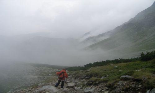 Zdjecie SłOWACJA / Tatry Zachodnie / Dolina Spalona / Powrót we mgle