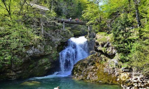 Zdjęcie SłOWACJA / Carniola / Bled / Wodospad rzeki wintgar