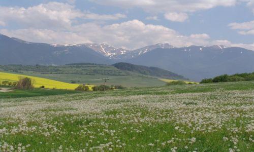 Zdjęcie SłOWACJA / Liptowski Mikulasz / Tatralandia / Wysokie Tatry, widok  z Liptowskiego Mikulasza