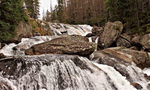 Zdjecie SłOWACJA / Słowackie Tatry  Wysokie. / Dolina zimnej wody / Wodospady Zimnej Wody.