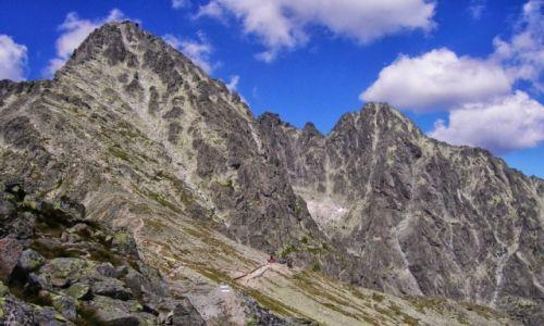 Zdjecie SłOWACJA / Tatry Wysokie / Łomnica / Pod szczytem