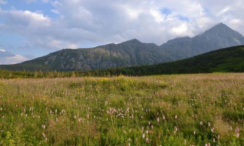 Zdjęcie SłOWACJA / Tatry Wysokie / Dolina Białych Stawów / Wielka Świstówka i Kieżmarski