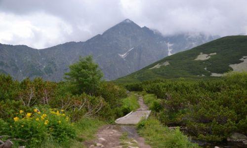 Zdjecie SłOWACJA / Tatry Wysokie / Dolina Białych Stawów / Na szlaku do Zeleneho Plesa