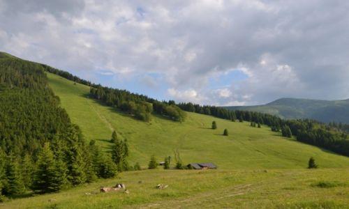 Zdjecie SłOWACJA / Mała Fatra / Przełęcz pod Południowym Groniem / Chata na Gruni