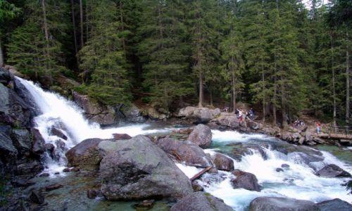 SłOWACJA / Poprad / Dolina Zimnej Wody / Zimny Potok
