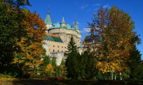 Zdjęcie SłOWACJA / Trenczyński Kraj / Bojnice / zamek