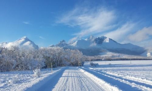 S�OWACJA / Tarty / S�owacja / S�owacja - wspomnienie zimy :)