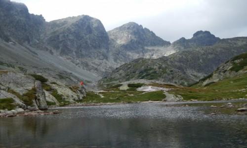 Zdjecie S�OWACJA / Tatry Wysokie / Dolina Starole�na / Wy�ni Harnaski