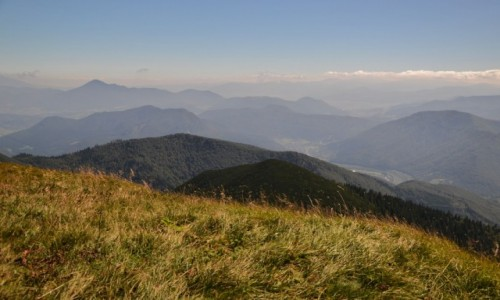 Zdjęcie SłOWACJA / Mała Fatra / Hromove / Widok w stronę Wielkiego Chocza