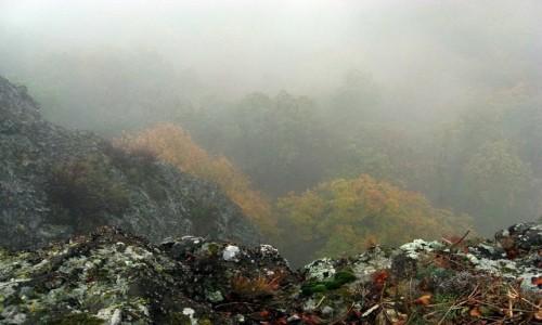 Zdjecie SłOWACJA / Slanske Vrchy / Rankovske Skaly / Jesień schowana za mgłą
