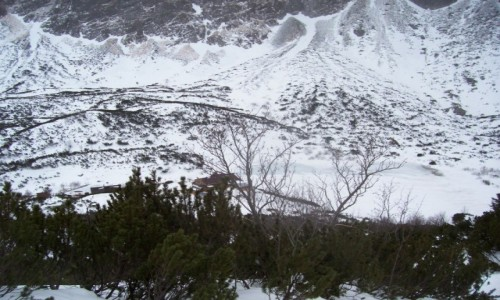Zdjecie SłOWACJA / - / Dolina Kieżmarska / Dolina Zeleneho Plesa (okolica Schroniska nad Zielonym Stawem)  / Tatry zimą