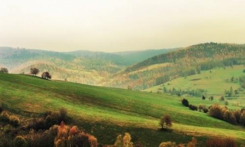 Zdjęcie SłOWACJA / Góry Czerchowskie (Cergov) / przed przełęczą pod Dlhą / W drodze na Mincol