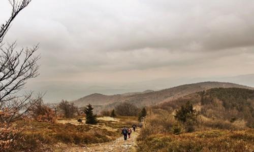 Zdjęcie SłOWACJA / Góry Czerchowskie (Cergov) / zejście z Mincola / Na szlaku (z pozdrowieniami dla kingi68)
