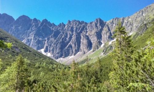 Zdjecie SłOWACJA / jaworowa dolina / gdzieś po drodze  / w drodze na Lodową Przełęcz