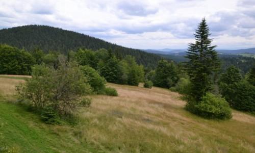 SłOWACJA / Kysuce / Przełęcz Beskyd / Bukovina