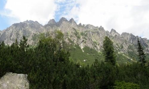 Zdjecie SłOWACJA / Zbójnicka Chata, / Dolina Staroleśna. / Panorama z Doliny Staroleśnej.